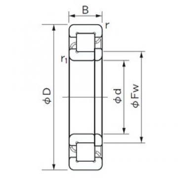 17 mm x 40 mm x 12 mm  17 mm x 40 mm x 12 mm  NACHI NUP 203 cylindrical roller bearings