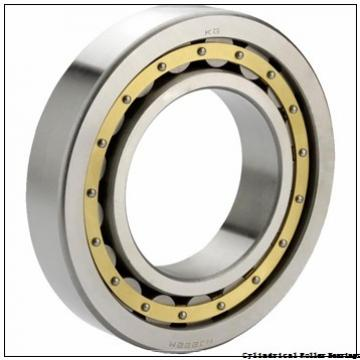35 mm x 80 mm x 31 mm  35 mm x 80 mm x 31 mm  NACHI NJ 2307 cylindrical roller bearings
