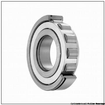 Toyana NJ205 cylindrical roller bearings