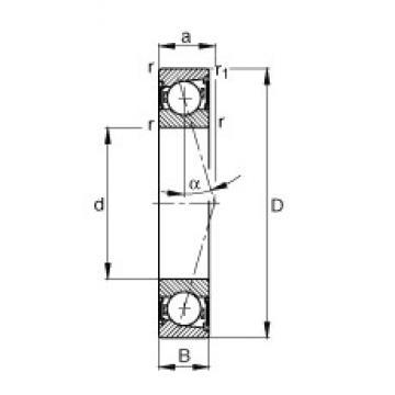 25 mm x 52 mm x 15 mm  25 mm x 52 mm x 15 mm  FAG B7205-C-2RSD-T-P4S angular contact ball bearings
