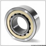 15 mm x 42 mm x 19 mm  15 mm x 42 mm x 19 mm  SKF PWTR 1542.2RS cylindrical roller bearings