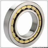 55 mm x 120 mm x 49,2125 mm  55 mm x 120 mm x 49,2125 mm  SIGMA A 5311 WB cylindrical roller bearings